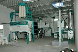 Grains Granules Pulses Powder Packing Machine