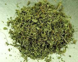 Javasa Leaf/ Persian Manna/ Alhagi Pseudalh