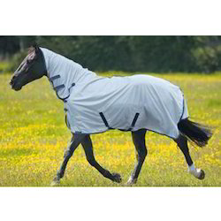 Gallop Mesh Fly Rug Ask For Price