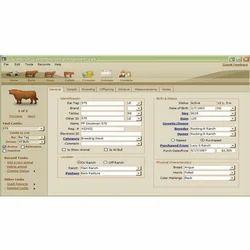 Cattle Management Software