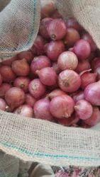 Nasik Onions