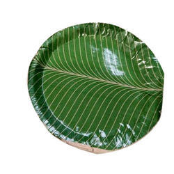 Banana Leaf Plate  sc 1 st  USR Enterprises & Disposable Plates - Banana Leaf Plate Manufacturer from Bokaro Steel ...