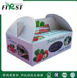 Printed Carton Box