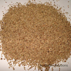 Ajwain Seed Extracts