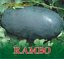 Rambo F-1 Hybrid Watermelon Seed