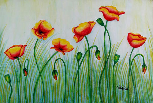 Water Colour Paintings Poppy Flowers Painting School College