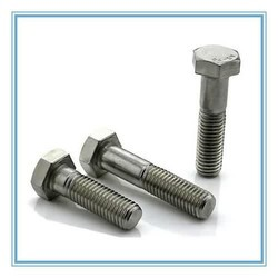 Stainless Steel Hex Head Nut