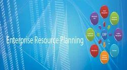 ERP Development Service