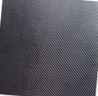 Porous Carbon Sheet