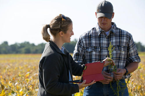 Agriculture Analysis