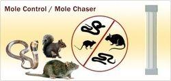 Mole Chaser
