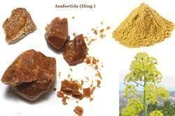 Asafoetida- (Heeng) Oil