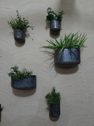 Galvanised Indoor Wall Planters With Brass Welding In 5 Different Sizes & Shapes