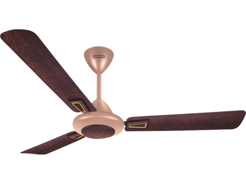 Decorative Premium Range Ceiling Fan Play Theme Series Luminous Whole Trader From Nashik