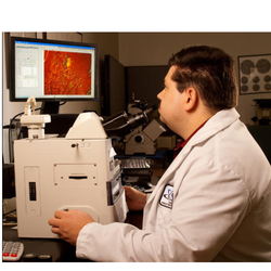 Metallography Testing Services
