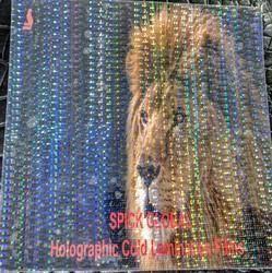 Holographic Metallised Transparent Cold Lamination Film