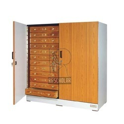 Large Insect Showcase Cabinet