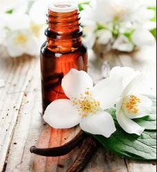 Natural Essential Oil - V
