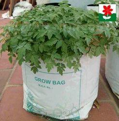 "5"" X 5"" X 10"" HDPE White Grow Bags"