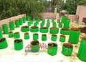 HDPE Bag Kit With Installation 50 Plant
