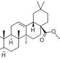 Benzyl Oleanolate