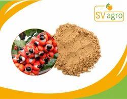 Guarana Seed 22% Caffein Extract