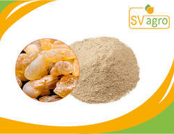 Boswelia Serrata Extract 50%, 65% 70%, 90% Sallai Guggul Ext