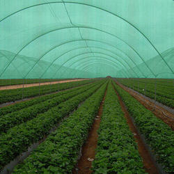 Agriculture Project Preparation Service
