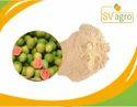 Spray Dried Guava Powder