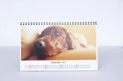 Personalized Calendar Printing