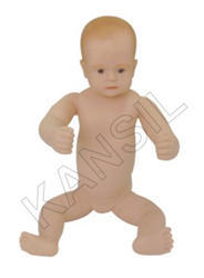 New Born Baby For Anatomical Model