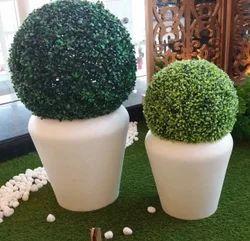 Designer FRP Planters