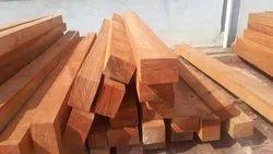 Tali Wood