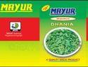 Mayur-5 Imp Coriander Seeds