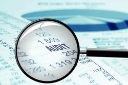 Statutory Audit Services