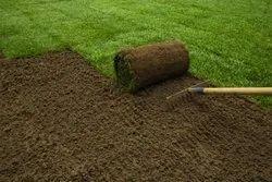 Garden Contractors, Coverage Area: 3000 To 10000 Square Feet