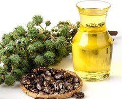 Kalonji Oils