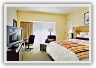 Deluxe Non AC Rooms