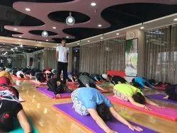 yoga classes yoga treatment services in mangalore
