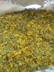 Dry Senna Auriculata Flower - Tarwar Phool