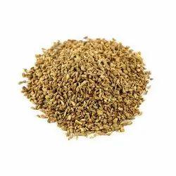 Semal Seeds
