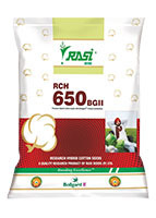 RCH 650 BGII  Seeds