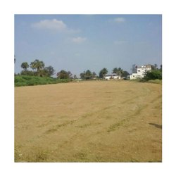 Commercial Land Consultancy Services