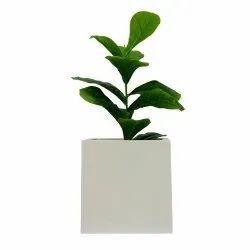 Garden Planter-25/18 (18x18x18)