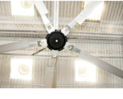 130 RPM Epoch Direct Drive HVLS Fans