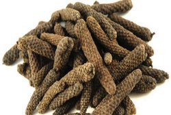 Long Pepper - Piper Longum - Pipali