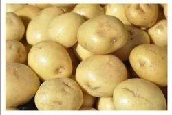 Cold Storage A Grade Kufri Chipsona 1 Potato, Jutt bag, 50
