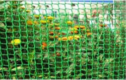Rectangular Fencing Nets, For Exterior Or Garden Areas, Size/Dimension: 10 X 15 Feet