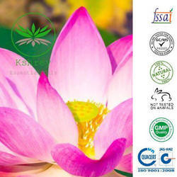 Indian Lotus Essential Oil