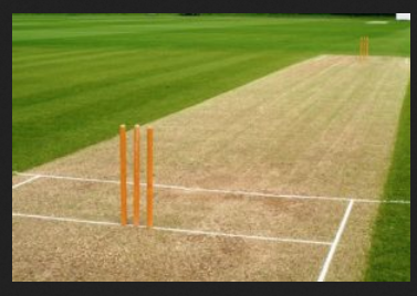 Cricket Pitch And Play Field Size Strips Should Be 24